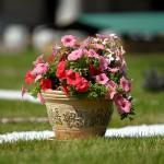 Дачное настроение: Garden Фест в