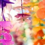 На ВВЦ в 19-й раз прошла выставка цветов Цветы/Flowers-IPM-2012