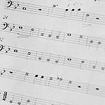 В Царицыно звучал орган