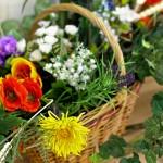 Журналистам объяснили тонкости цветочного флирта