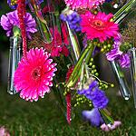 Moscow Flower Show: серьёзно о красивом