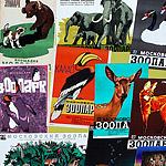 150 лет московскому зоопарку:  в гости к животным