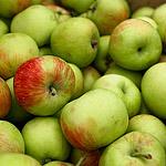 Преображение Господне: Яблочный Спас в Яблочном сквере