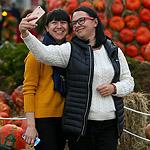 В Москву пришла фермерская «Золотая осень»