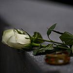 Помни: в Москве открыли мемориал жертвам политических репрессий