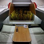 Красиво и за шторкой: на выставке «Транспорт России» показали новый плацкарт. Поехали?